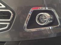 vien-den-gam-theo-xe-ford-ecosport-1